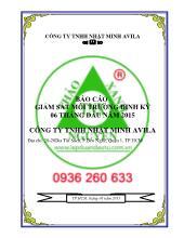 Báo cáo giám sát chất lượng môi trường định kỳ 6 tháng đầu năm 2015 công ty TNHH Nhật Minh Avila