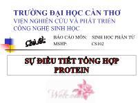 Sự điều tiết tổng hợp protein